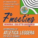 LOCANDINA 7 MEETING